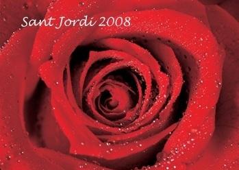 20080422200628-rosa08.jpg